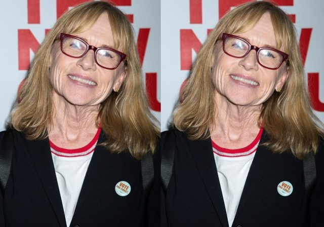 Amy Madigan – Bio, Age, Net Worth, Facts About Ed Harris' Wife