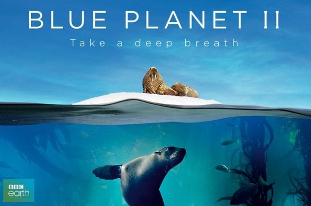 Is Blue Planet 2 Available On Netflix? If Not, When Will It Be Available